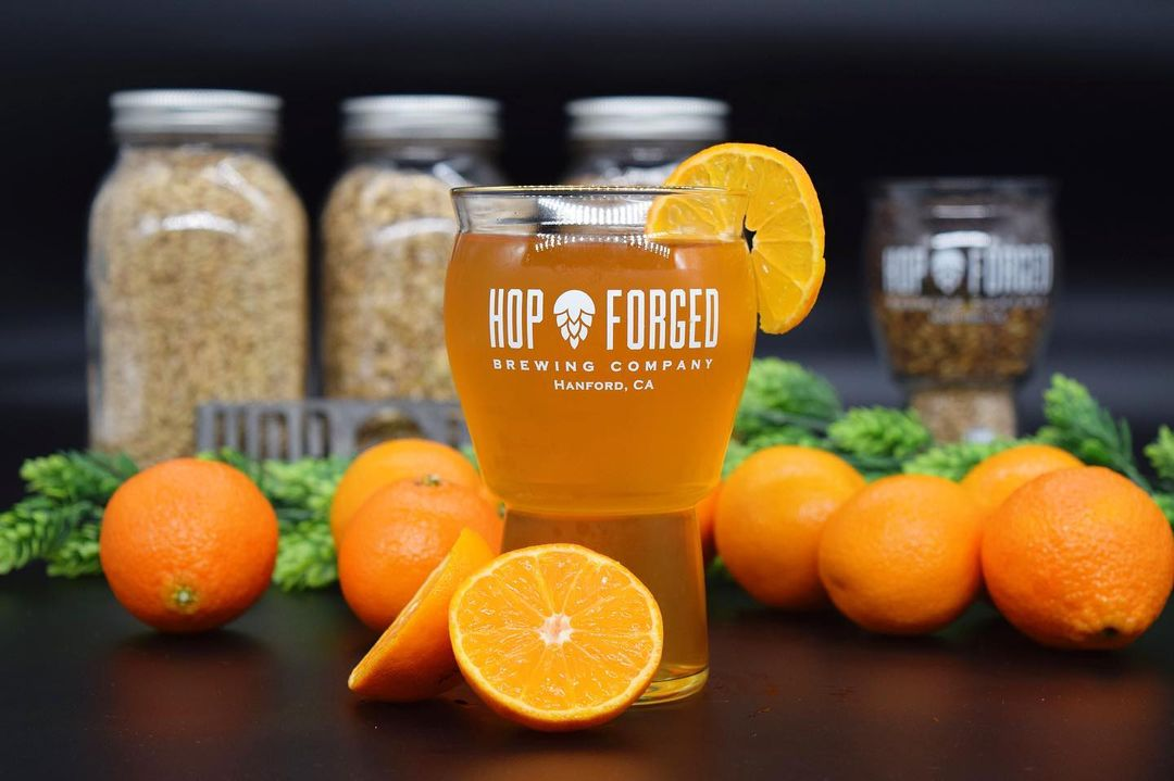Hop Forged Brewing Company - Back Board Flight